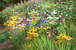 Lynne Adams Flowers  01