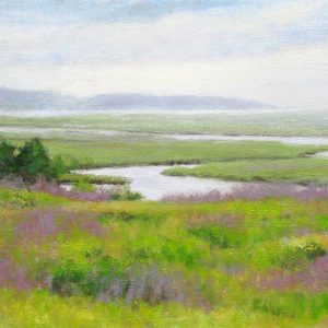 Cape Marshes